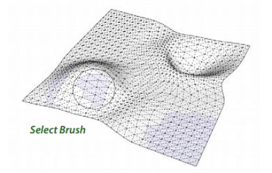 select brush
